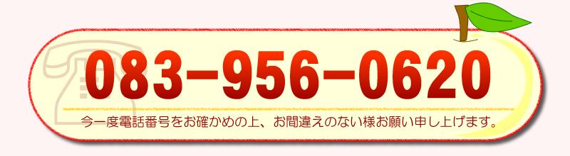 TEL 083-956-0620